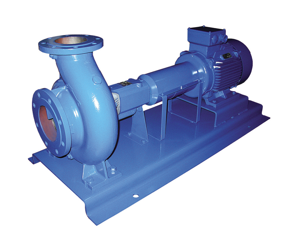 Ebara ENR 200-250 Centrifugal Pump | Prestige Pumps